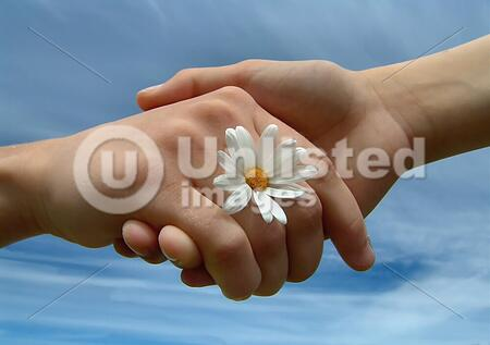 Children holding hands w/daisy