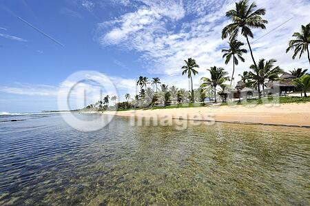 Beach in Porto de Galinhas, Brazil