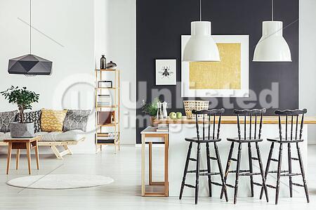 Spacious Interior In Rustic Style